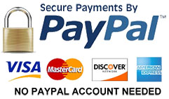 paypal payment online